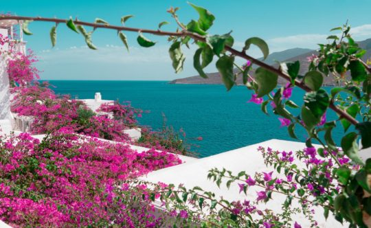5 Reasons to Visit Tilos in Spring